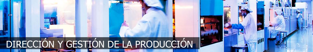 Dirección y Gestión de la Producción Fp++