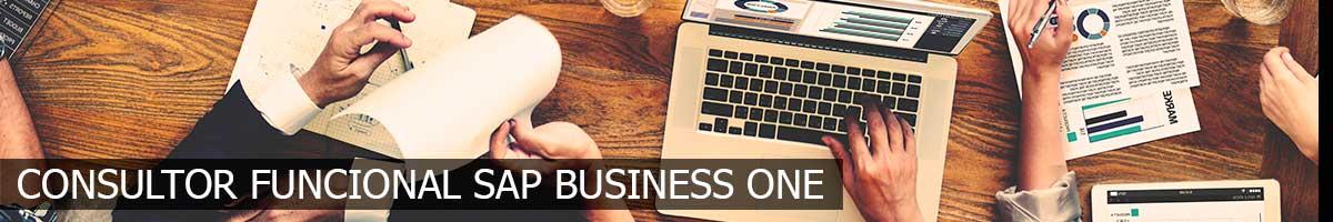 Experto Consultor Funcional Sap Business One | Fp++